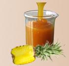 fruit pulps mango pineapple pulp tomato puree