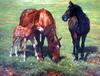 hand oil paintings