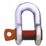 shackle export