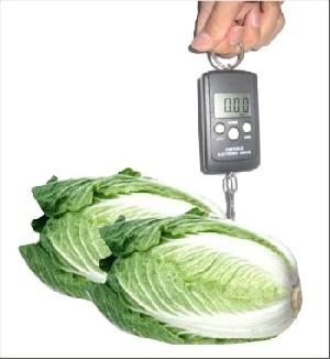 portable electronic vegetable scales 5kg 2g 10kg 10g 40kg kg lb temperature instructio