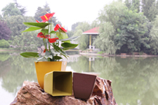 biodegradable plant fibre flower pots