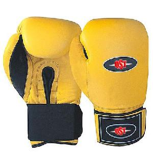 profight boxing gloves