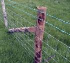 grassland fence mesh prairie wire