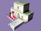 greenspring histamine elisa test kit