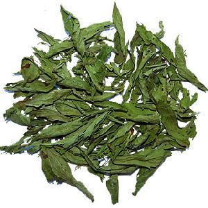 stevia paraguay