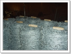 25kgs coil barbed wire