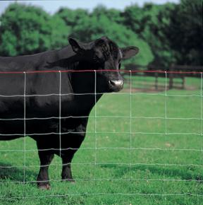 field fence grassland