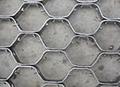 tortoise shell mesh