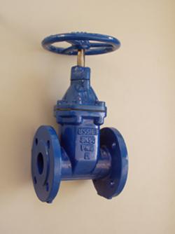 gate valve bs5163