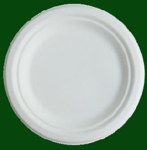 dispostable bagasse tableware