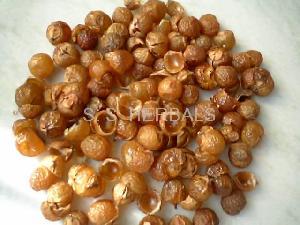 wash nuts waschnusse
