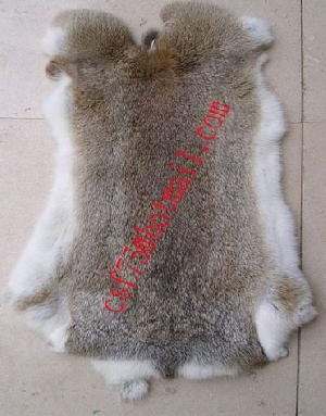 Sell Rabbit Fur