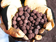 iron ore concentrate pellets