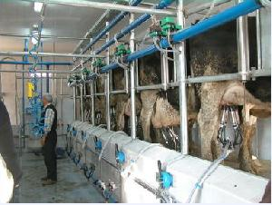 dairy systems scr engineers