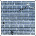 iron wire netting window