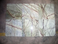 rain forest marbles