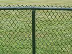 dark green pvc coated chain link fence mesh