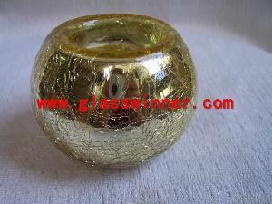 seashell glass