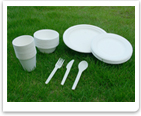 100 biodegradable tableware plastic eco