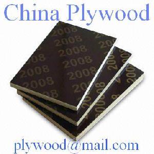 birch plywood derdon chen