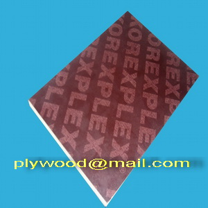 construction plywood brown film faced derdon chen