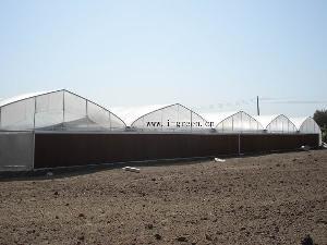wl8132 greenhouse planting