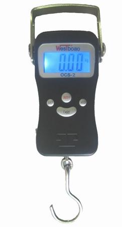 metallic body digital fishing scales