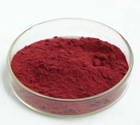 vaccinium myrtillus extract form plamed