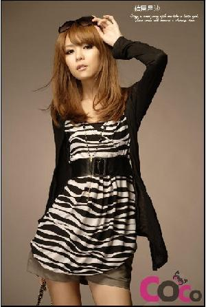 zebra stripe fake picecs blouses belt