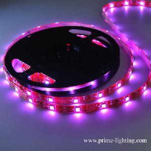 chaning rgb smd5050 led strips lights lighting dc12v 7 colors strip factory chin