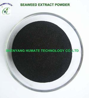 seaweed extract flake powder fertilizer