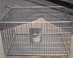 netting chest