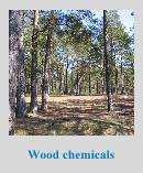 wood preservative chemicals