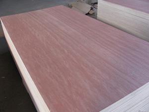 export bintangor plywood