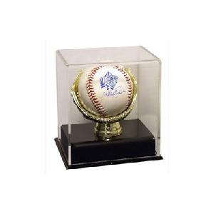 acrylic gold glove baseball case