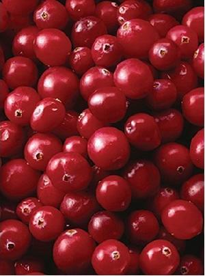 cranberry p e