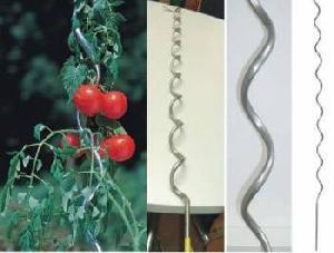 tomoto sprial wire dip galvanized