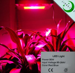 led grow light stimulate plant