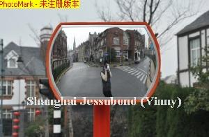 roundtangular convex mirror