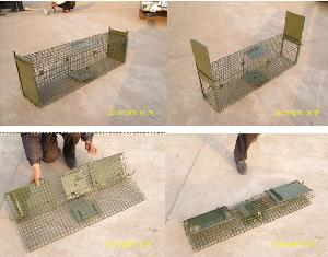 collapsible catching cage chipmunk squirrel