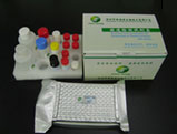 nitrofuran aoz elisa test kit