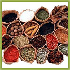 Wanted Business Associates For Our Business Which Mainly Deals In Manufacturing Of Pickles, Spices