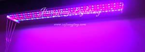 led strip grow light