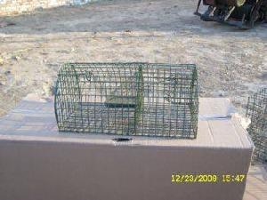 plaint surface multi capture mouse trap