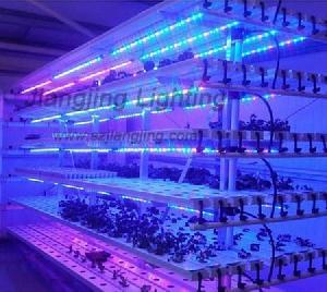 plant growth led bar lights