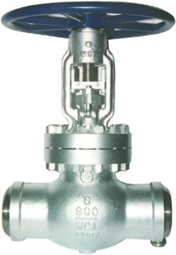 cast gate globe check valves