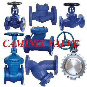 din gate valve globe check strainer caminix