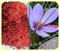 saffron mongra gucchi lacha