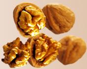 walnuts � shell walnut kernels