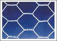 hexagonal wire netting